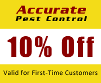 10% Off, Valid for First-Time Customers
